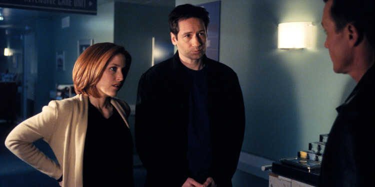 Mulder-and-Scully-mulder-and-scully-8403955-2560-1693